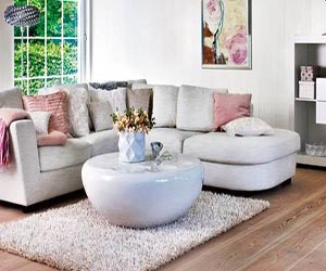 wood floor Decor Collection